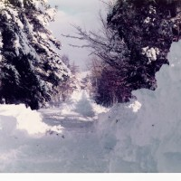 Snow at Errogie Jan 1978