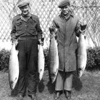 Good Days Fishing on Loch Ness Paddy Murray and Robert (Buff) Macleod proudly display their days catch . Photo was taken in late fifties .  Photograph courtesy of John Murray