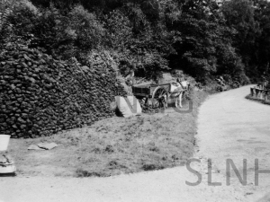 Aultmhor Cottage Peat Stack c1935.