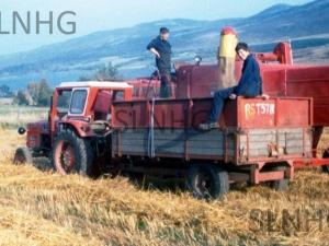 Gothleck Mains Harvest