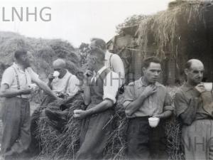 North Lyne Corn Thrashing c1960.