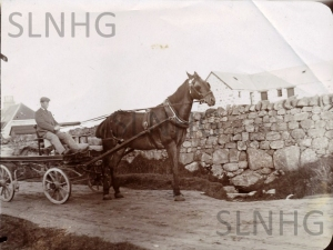 Horse with flatbed cart just east of South Lyne