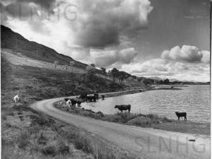Loch Tarff or the Bull Loch,