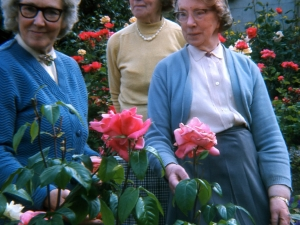 Macgillivray Sisters.