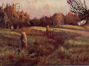 The Battlefield Culloden Moor