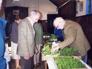 Ronnies plant sale in Foyers Church hall