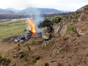 4 April Burning the gorse.