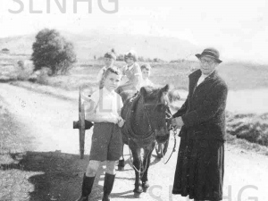 Donkey and Cart .